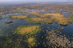 Okavango delta from the air Royalty Free Stock Images
