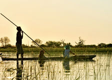Okavango Delta Cruise royalty free stock photo