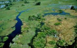 Okavango-delta: de största floderna efter 46 år Royaltyfri Foto