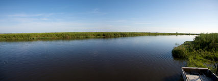Okavango delta. Landscape of water and grass in the Okavango Delta in North of Botswana. The Delta is the biggest sweatwater reservoir in this area and the water Royalty Free Stock Photography
