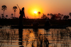 Okavango Delta at sunset, Botswana. Tipical boat at sunset, Botswana. Local guides lead tourists into the channels formed by the seasonal floods stock images