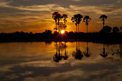 Okavango Delta. Sunset about the Okavango delta in Botswana Stock Photo