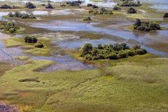 Okavango Deltaantenne Stockfotografie