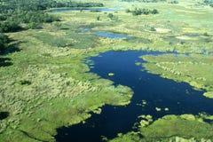 Okavango Dreieck durch Flugzeug Lizenzfreie Stockfotografie