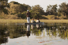 Okavango Trip with Dugout Canoe in Botswana. Tourists can have a great experience to go with the local people in mokoro-boats (dugout) through the flooded area royalty free stock photography