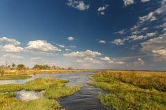 Okavangodelta, Afrika Royalty-vrije Stock Afbeeldingen