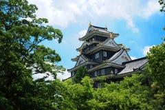 Okayama-PB kasteel royalty-vrije stock fotografie