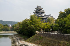 Okayama slott Royaltyfri Bild