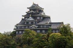 Okayama slott Royaltyfri Foto