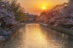 Okazaki-Kanal während der Frühlingskirschblütenjahreszeit stockfotografie
