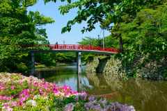 Okazaki Park with tender green in Aichi, Japan Royalty Free Stock Photos