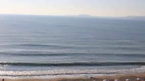 okean zbiory
