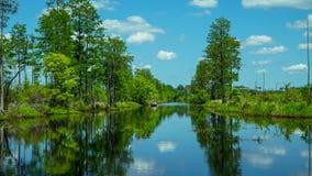 Okeefenokee全国野生生物保护区运河 免版税库存照片