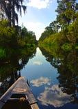 Okefenokee Swamp. Canoe into the Okefenokee swamp Royalty Free Stock Photo