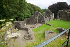 Okehampton slott Cornwall UK Fotografering för Bildbyråer