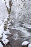 Okement do rio no inverno Fotografia de Stock