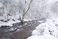 Okement do rio no inverno Fotos de Stock Royalty Free