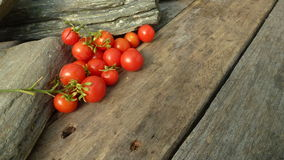 OkenTomato, cereza, tomate rojo, pequeño tomate del spaeski Imagen de archivo libre de regalías