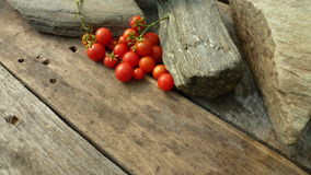 OkenTomato, cereza, tomate rojo, pequeño tomate del spaeski Foto de archivo
