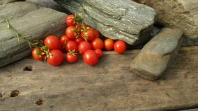 OkenTomato, cherry, red tomato, small spaeski tomato. Tomato for windows and small spaces on wooden table Royalty Free Stock Image