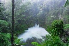 Okere cai em Rotorua fora do lago Rotoiti após a chuva pesada Fotos de Stock
