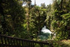 Okere Falls, New Zealand Royalty Free Stock Photo