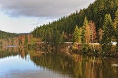 Okertalsperre in de winter, Harz, Duitsland. royalty-vrije stock afbeeldingen
