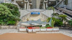 OKINAWA, JAPAN - April 20 , 2017: Okinawa Churaumi Aquarium, Oki. Nawa , Japan. It was the largest aquarium in the world until it was surpassed by the Georgia Royalty Free Stock Photo
