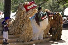 Okinawan танцоры льва Стоковые Фотографии RF