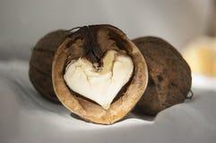 Okkernoot en hart Stock Foto's