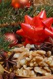 Okkernoten en steranijsplant Stock Foto