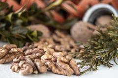 Okkernoten op een witte lijst, okkernootpitten Gezond voedsel van okkernoot Okkernoten in de mand stock foto