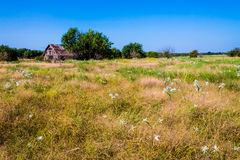 Oklahoma Barn in Field Royalty Free Stock Photography