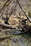 Oklahoma Creek Royalty Free Stock Image