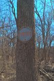 Oklahoma Trees Stock Image
