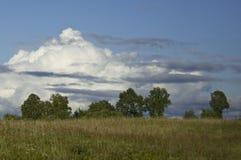 oklarheter field över SOMMAREN landskap Arkivfoto