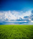oklarheter field green över arkivbilder
