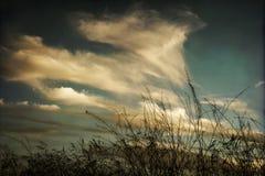 Oklarheter på solnedgången Arkivfoton