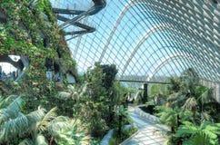 Oklarhetsskog, trädgårdar vid fjärden Arkivbilder