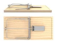 Oklepa bocznego i odgórnego drewniany mysz widok, Obrazy Royalty Free