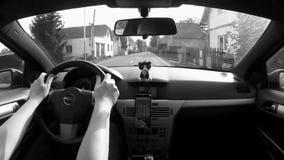 Okna, чехия - 13-ое октября 2017: управлять автомобилем в деревне Okna около города Litomerice между старыми домами в осени акции видеоматериалы