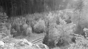 Okna, republika czech - Październik 13, 2017: pociąg pasażerski na śladzie 080 między Okna i Bezdez dworcami w jesiennym Macha `  zdjęcie wideo