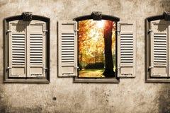 okno ilustracja wektor