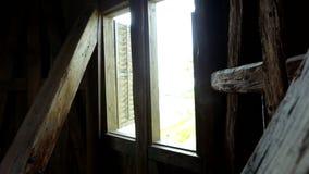 Okno zbiory wideo
