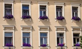 Okno dekorujący z kwiatu patrycjusza starym domem, Jihlava, republika czech obraz stock