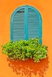 Okno i kwiat Obrazy Stock