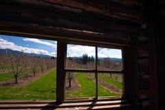 Okno od starego i przyschniętego w genialnej przyszłości Obrazy Stock