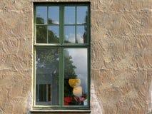 Okno odbija outdoors Obrazy Stock