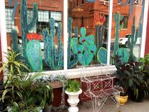 Okno przód z roślinami i Malującym kaktusem Obraz Stock