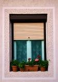 Okno z kwiatami w słojach obraz royalty free